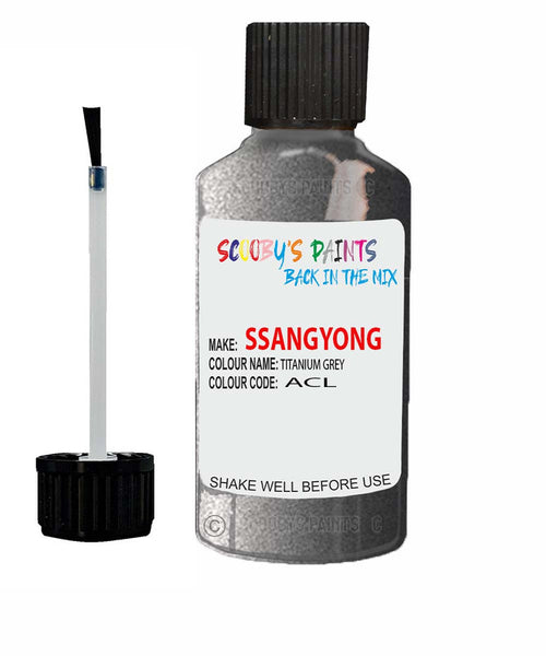 Ssangyong Chairman Titanium Grey Acl Touch Up Paint
