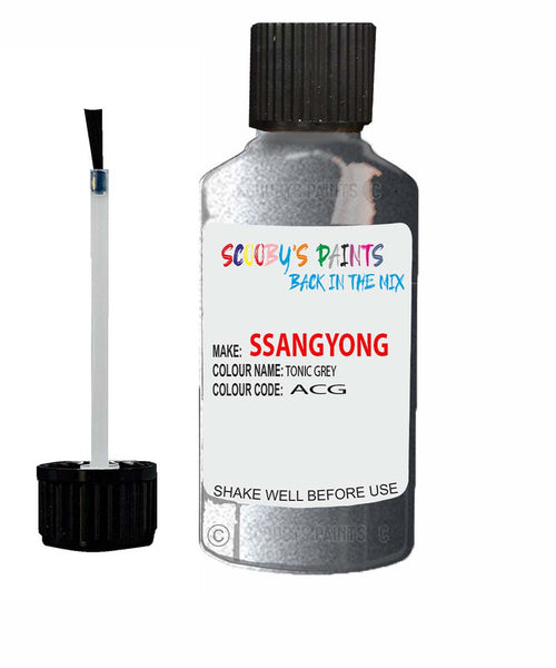 Ssangyong Actyon Tonic Grey Acg Touch Up Paint