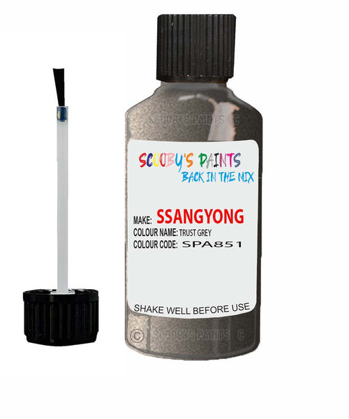 Ssangyong Musso Trust Grey Spa416 Touch Up Paint