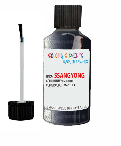Ssangyong Rexton Under Blue Acb Touch Up Paint
