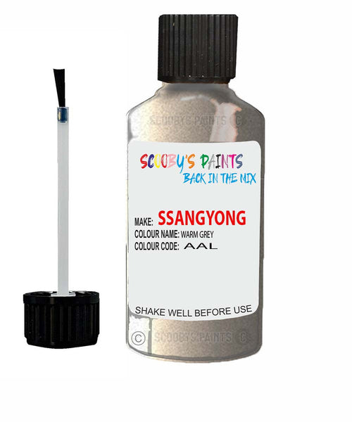 Ssangyong Musso Warm Grey Aal Touch Up Paint