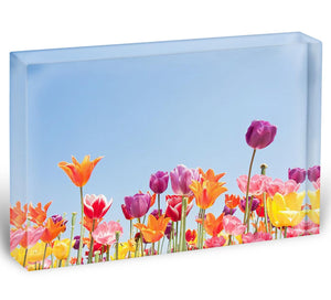Acrylic Block - 8 Sizes Available