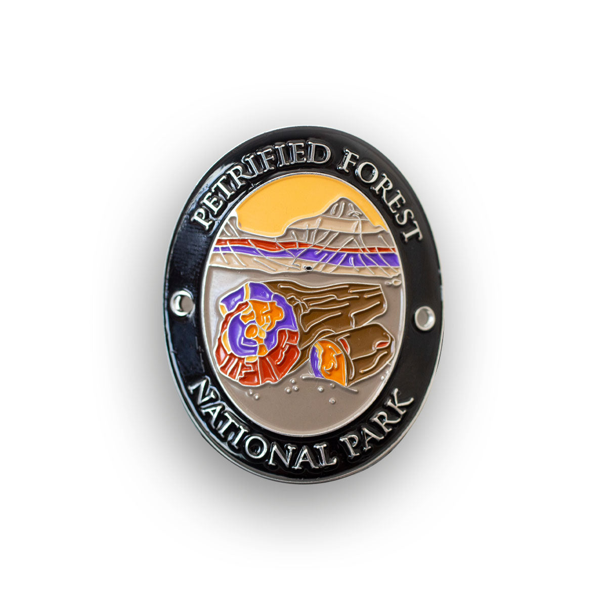 Petrified Forest National Park Traveler Walking Stick Medallion