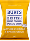 Burts Potato Chips- Mature Cheddar & Spring Onion