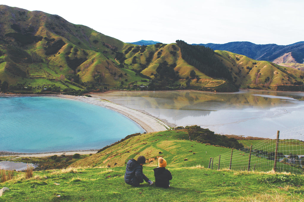 man and woman sitting on grass field near lake during daytime photo