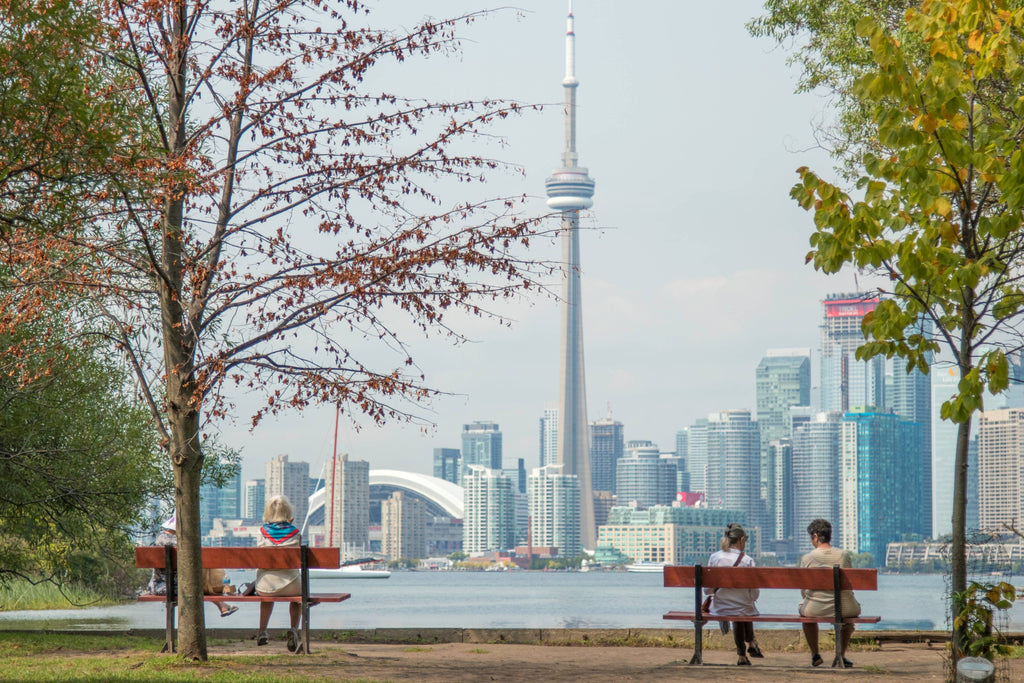 four people sits on park benches across city scape photo