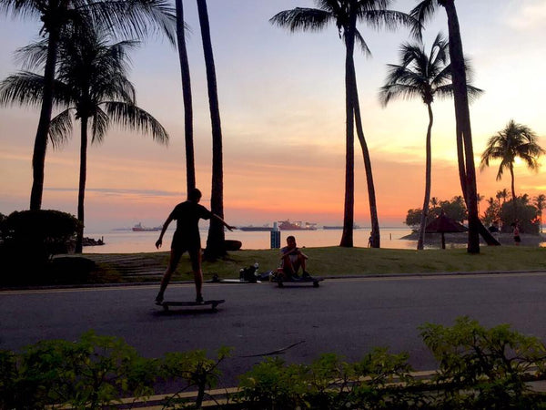 longboard in the sunset singapore