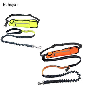 Handsfree Bungee Dog Leash with Waist Bag - Common Panda