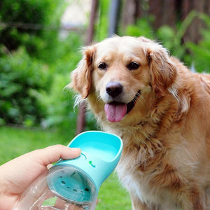 PupBud+ Portable Dog Water Bottle - Common Panda