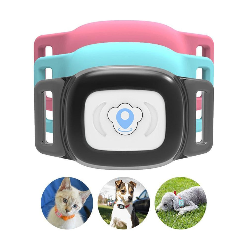Pet GPS Tracker Tracking Collar Waterproof, Adjustable - Common Panda