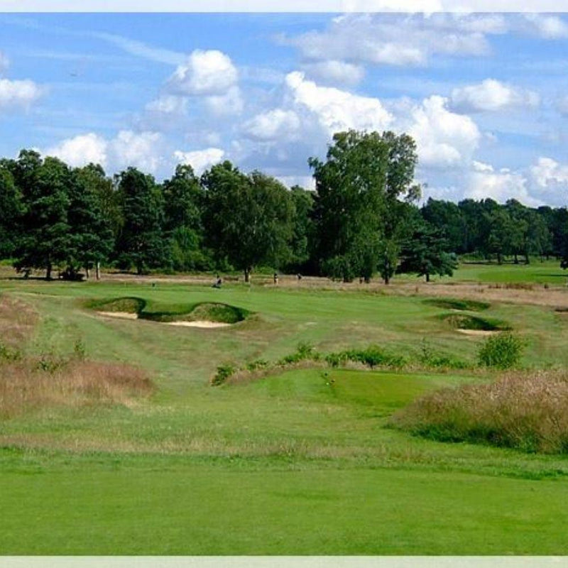 Walton Heath Old