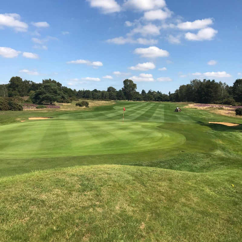 Frilford heath 2020 Golf Competition 2nd September
