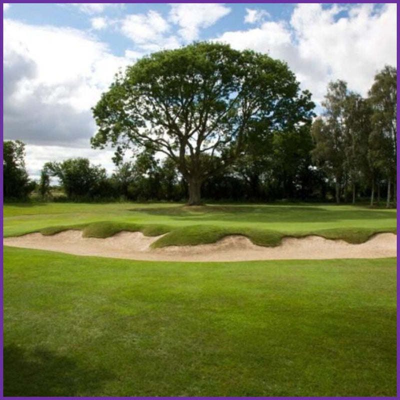 Fulford 2020 Golf Competition 28th September