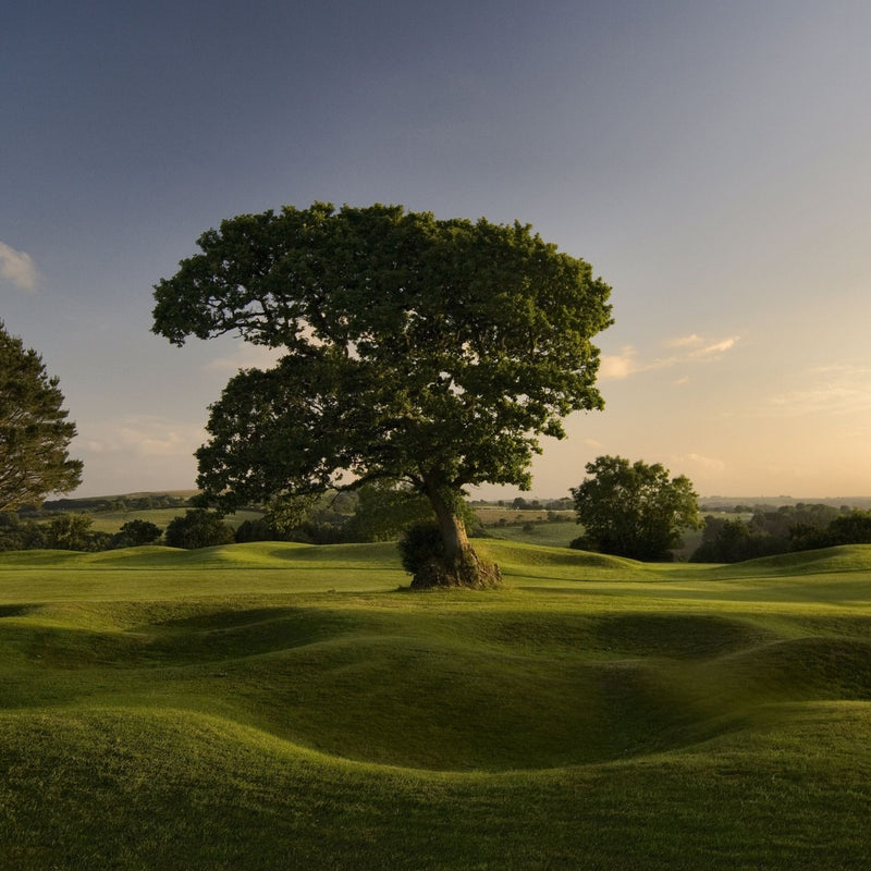 St Mellion 2020 2 days Golf Competition 29th - 30th September