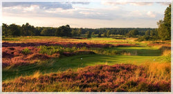 Walton Heath Old 2018 golfpairs