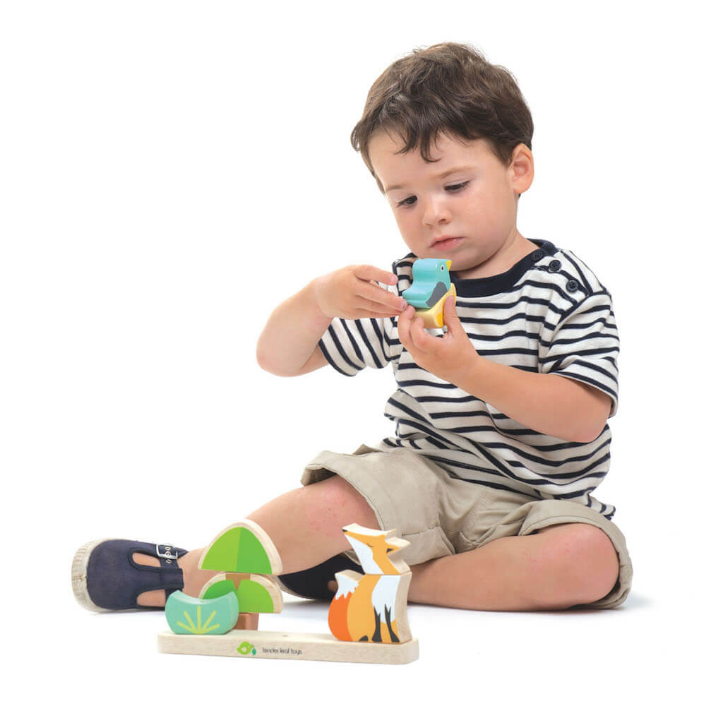 Boy playing with the Tender Leaf Toys Foxy Magnetic Stacker
