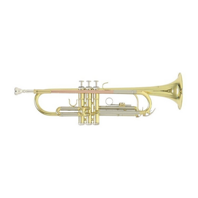 Roy Benson Bb-Trumpet lacquer finish TR-403 including light rectangular case