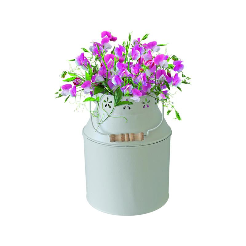 Milkchurn with Sweet Pea Seeds