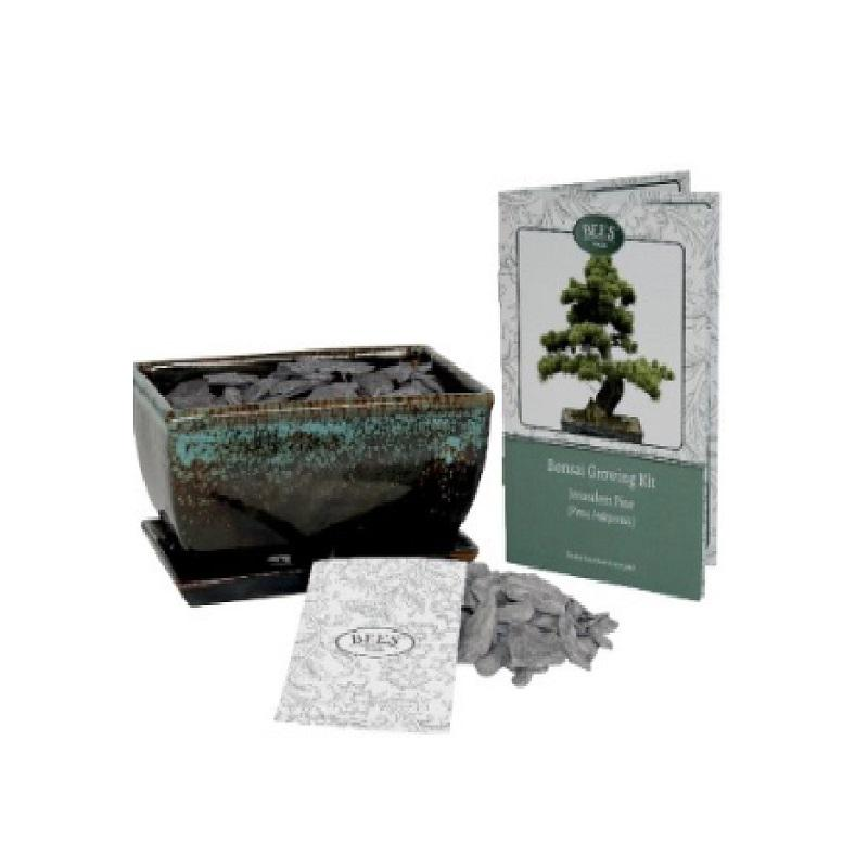 Bonsai Growing Kit