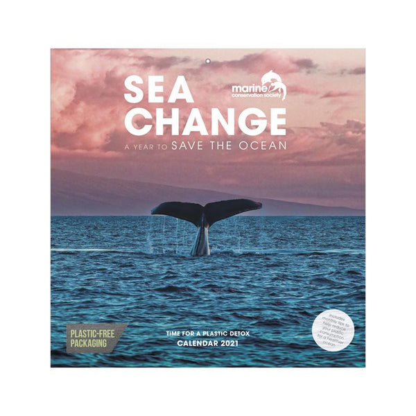 Sea Change, Marine Conservation Society 2021 Wall Calendar