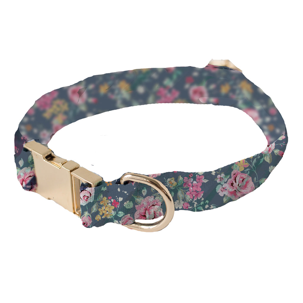 Dog Collar Augusta Small