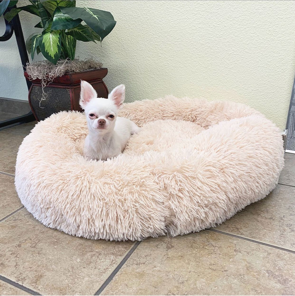 Plush Donut Bed - Snuffle Time