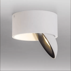 Hale Directionable Flush Ceiling Light in White - ID 9036