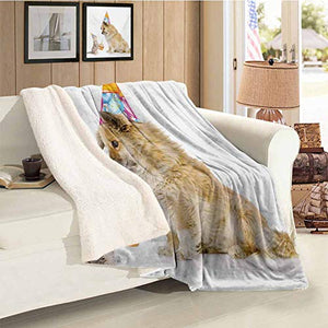 Kids Birthday Custom Blanket Cartoon Sketchy Dog Image with Colorful Balloons and Boxes Animal Fun Print Multicolor Gift Throw Blanket for Women Men Throw Size