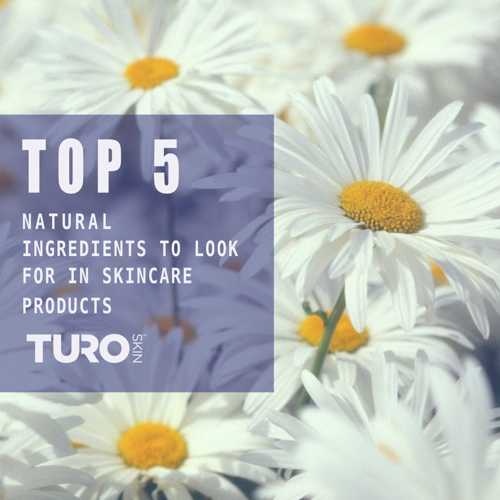 Top 5 Natural Ingredients to Look For In Skincare Products