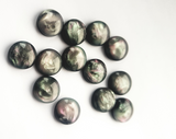 10mm or 12mm Resin Shell Cabochons