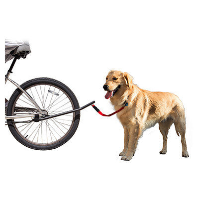 Sunlite Bike Dog Leash