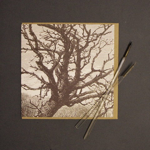 'Brown Tree' Greetings Card