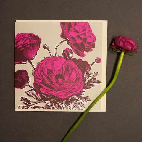 'Ranunculus - Bright Pink' Greetings Card