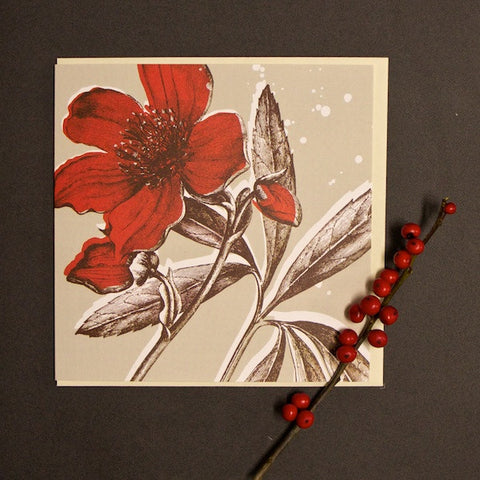 'Christmas Rose' Greetings Card
