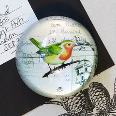 Robin Glass Dome Paperweight