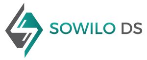 Sowilo DS company logo