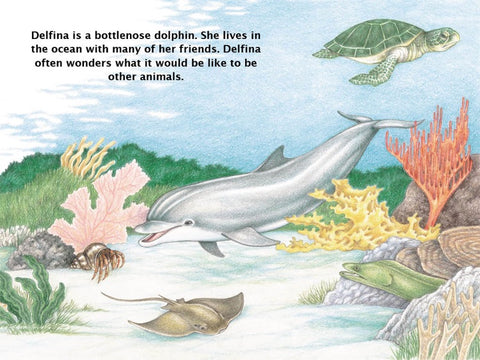 Ivy Kids Kit - If a Dolphin Were a Fish