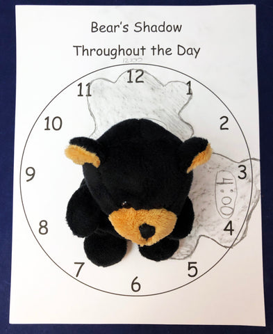 bear shadow recording activity shadow experiment kids science
