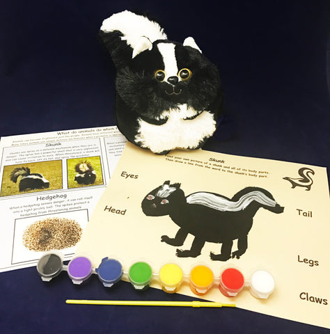 Learn facts about a skunk and other Nocturnal Animals