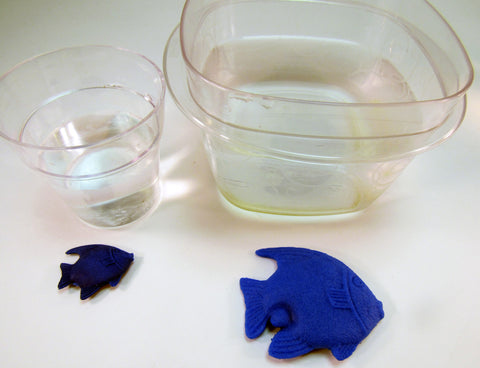 Growing Creatures: Science Activity inspired by A Fish Out of Water by Helen Palmer