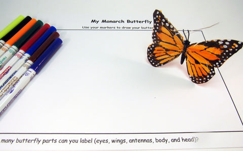 Observational drawing of a monarch butterfly - Ivy Kids Educational Activity Kit featuring the book Gotta Go! Gotta Go! by Sam Swope and over 10 art, literacy, math, and science activities inspired by the story. Learn about monarch butterflies. Perfect kit for spring.