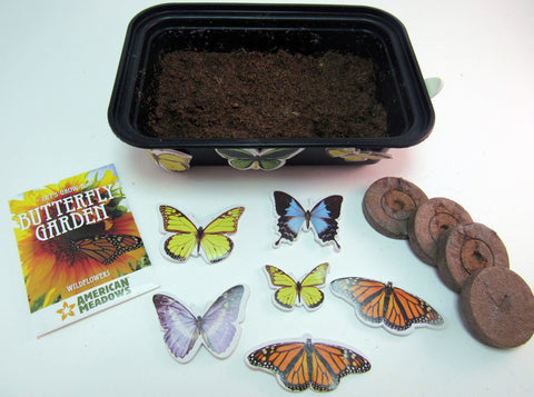 Plant a wildflower garden to attract butterflies - Ivy Kids Educational Activity Kit featuring the book Gotta Go! Gotta Go! by Sam Swope and over 10 art, literacy, math, and science activities inspired by the story. Learn about monarch butterflies. Perfect kit for spring.