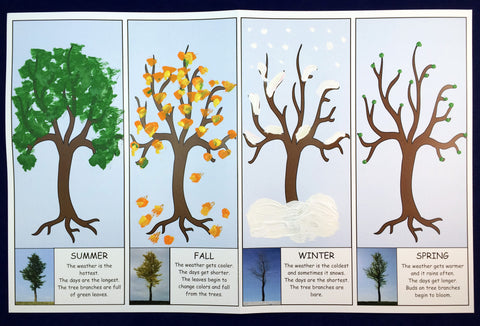 Science and art activity - Four seasons of a tree inspired by the book Leaves by David Ezra Stein