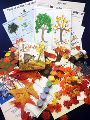 Fun and educational activities based on the book Leaves by David Ezra Stein