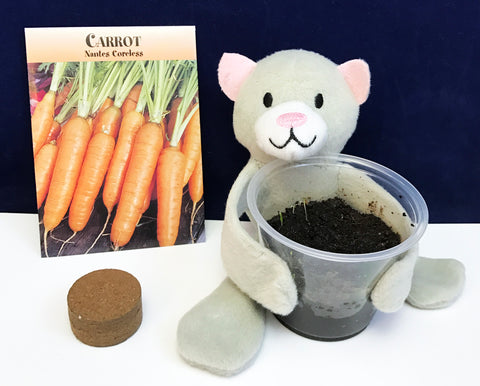 Growing Carrot Seeds for kids