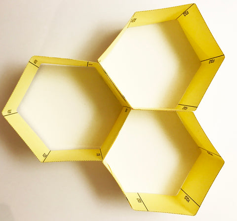 Build a beehive craft project