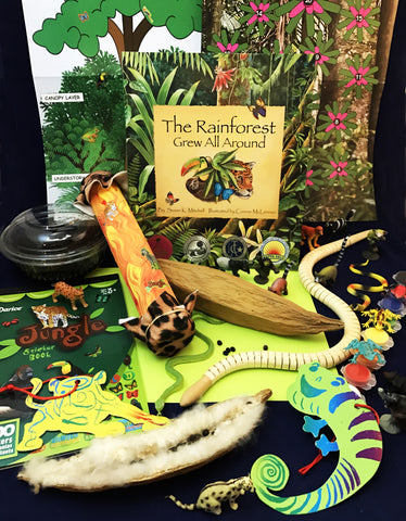 Rainforest activities Literacy, math, science, and art