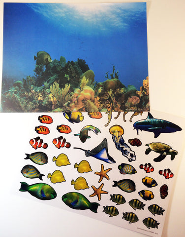 Inspired by the book Over in the Ocean in a Coral Reef: Create your own coral reef scene using stickers