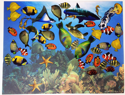 Science and art activity inspired by the book Over in the Ocean in a Coral Reef: Create your own coral reef scene using stickers