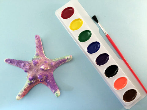 Science activity inspired by the book Over in an Ocean in a Coral Reef. Exploring and painting starfish.
